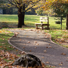 by Theofilos Antzas - City,  Street & Park  City Parks