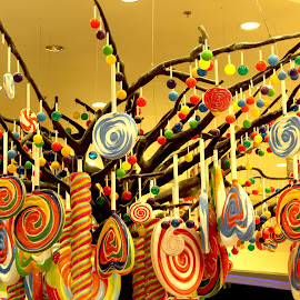 Candylicious by Roshni Tito - Food & Drink Candy & Dessert ( colourful, candy, lollipop, yummy, vibrant )