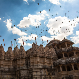 Jain  by Jarret Gibbons - Buildings & Architecture Places of Worship ( clouds, jain temple, india, birds, ranakpur )