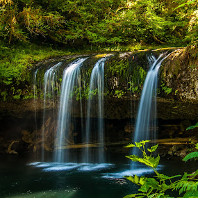 Upper Butte Creek Falls by Ivan Johnson - Landscapes Waterscapes (  )