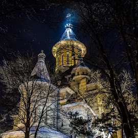 by Zaharescu Dragos - City,  Street & Park  City Parks