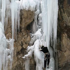 Ice climbing by Hamed Ghalandar - Sports & Fitness Climbing ( tehran, iran, hameloon )