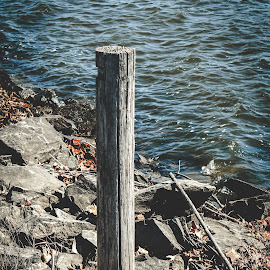 Wooden Post with a Lake View by Rob Heber - Artistic Objects Other Objects ( twigs, natural light, wood, dry leaves, blue water, leaves, lake shore, weathered, choppy water, recreation area, cracked wood, nature, pole, secluded, ripples, no people, shoreline, weathered wood, rocks, closeup, water, post, waves, lake, close up, wooden pole, rocky ground, winter, outdoors, sticks, day, stones, wooden post, rough terrain )