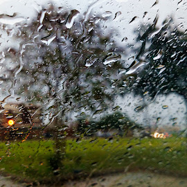 I Can't Stand the Rain. by Kirk Barnes - Abstract Water Drops & Splashes ( rain, drops, silhouette, window, trees )