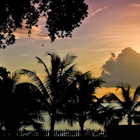 Setting over Gibb's Beach by Fergus Ford - Landscapes Sunsets & Sunrises ( barbados, beach, gibbs )