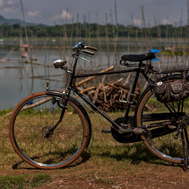 old bike by Hill S - Transportation Bicycles ( old, rarely, photography, classic, asian, bicycle )