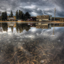 Dahmen Barn Reflection by Eric Demattos - Buildings & Architecture Decaying & Abandoned ( water, reflection, dahmen, barn, uniontown, eric demattos, frozen )