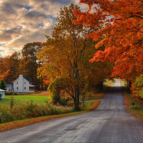Pure Michigan by Dennis Granzow - Landscapes Prairies, Meadows & Fields ( michigan, farm house, colorful trees, fall landscape, country rd )