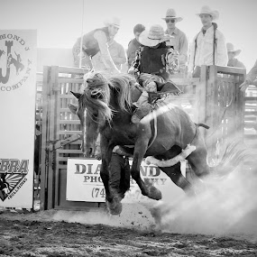 The Mark Out by Brian  Shoemaker  - Black & White Sports ( cowboy, dust, rodeo, bronc, dirt, bareback, toes out,  )
