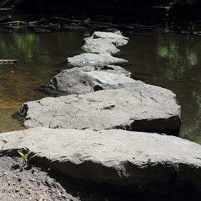 Rocks by Kelly Lippitt - Novices Only Objects & Still Life ( rocks, river )