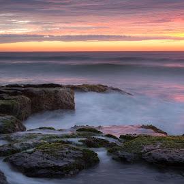 Morning Burn by Matthew Wood - Landscapes Waterscapes ( sky, australia, sea, ocean, beach, seascape, sunrise, rocks )