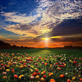 Once Upon A Time by Phil Koch - Landscapes Prairies, Meadows & Fields ( dramatic landscapes, , hdr )