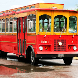 Trolley Named Desire by Noel Hankamer - Transportation Automobiles ( trolley, red, desire, transportation, yellow, streetcar,  )