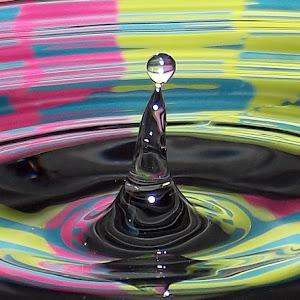 drops Jan 22 2012f1108.jpg