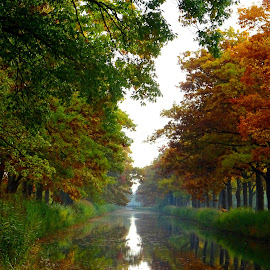 Colorful canal in autumn by Edwin van Rossen - Landscapes Waterscapes ( water, autumn, colors, trees, canal )