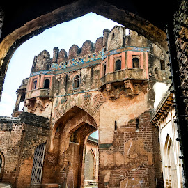 Main Enterence by Vaibhav Jain - Buildings & Architecture Statues & Monuments ( bidar, walls, fortm, ancient, door, entrance, main entrance,  )