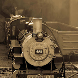 Minature Steam Train B&W by Andrew Stubbings - Transportation Trains ( black and white, steam train, train )
