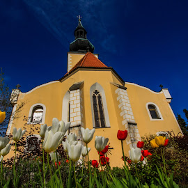 Church in Grossschönau in Austria by Franz  Adolf - Buildings & Architecture Places of Worship ( church, flowers )