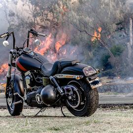 Too Hot Too Ride by Uwe Wullfen - Transportation Motorcycles ( harley davidson, uwe wullfen photography, may 2015, winter, noosa, australia, bush fire, fire )