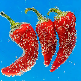 Three Peppers by Jim Downey - Food & Drink Fruits & Vegetables ( red peppers, blue, submerged, bubbles, shapes )