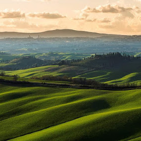 and there, finally, Siena.  by Lorenzo Moggi - Landscapes Prairies, Meadows & Fields