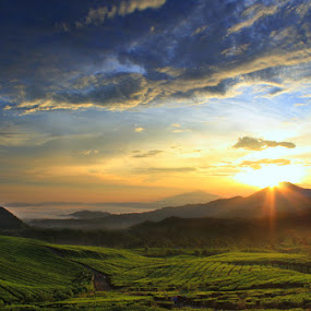 Sunrise in West Java by Budiana Yusuf - Landscapes Mountains & Hills ( west java, sunrise, morning )