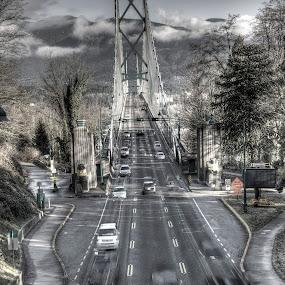 by Terri-Lynne Macdonald - Buildings & Architecture Bridges & Suspended Structures