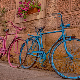 two bicycles by Eseker RI - Artistic Objects Still Life