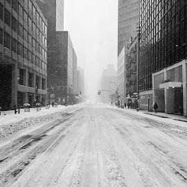 NYC Winter #8 by Tomasz Karasek - City,  Street & Park  Street Scenes ( b&w, winter, snow, white, lexington ave, nyc, new york )
