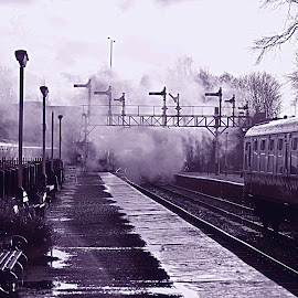 Tracks   of  the  past by Gordon Simpson - Transportation Railway Tracks