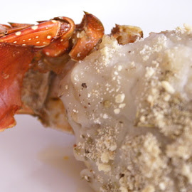 Los placeres del Mar by Martin Leija - Food & Drink Plated Food