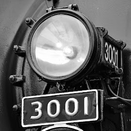 Engine 3001 by Lori Gauthier - Novices Only Objects & Still Life