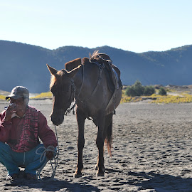 Tengger Cowboy by Harry Taib - People Portraits of Men ( national park, tengger, indonesia, bromo )