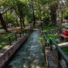 Garden by Stratos Lales - City,  Street & Park  City Parks ( water, stream, trees, drama, garden )