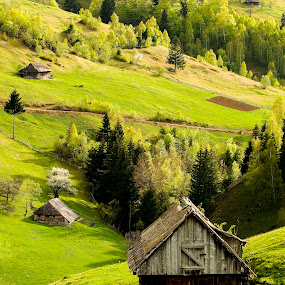 Spring Rhapsody by Sorin Tanase - Landscapes Mountains & Hills ( hills, romania, matura, house, spring, brasov )