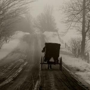 DSC_0393 (3)Amish.jpg