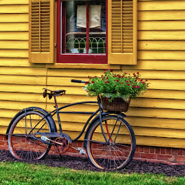 Flower Delivery by James Kirk - Transportation Bicycles ( basket, flowers, bicycle )
