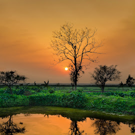Majestic Nature by Nazmul Islam Tipu - Landscapes Waterscapes ( water reflection, warm, nature, sunset, landscape,  )