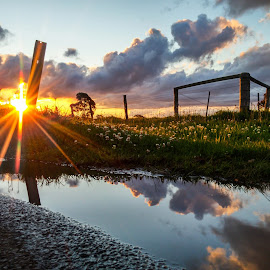 Cloudy puddle by Tom Gough - Instagram & Mobile Android ( farm, sunset, puddle )