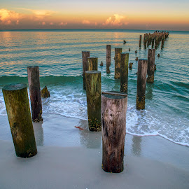 Morning Tide by Erin Nicholl - Landscapes Waterscapes