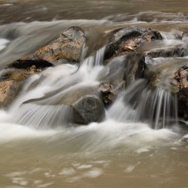 Virgin River by Ashish Gupta - Nature Up Close Water ( water, nature, park, national, usa, zion, river )