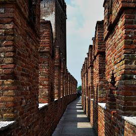 Scarpa by Eleni Spiliopoulou - Buildings & Architecture Public & Historical ( arch, verona, scarpa, architecture, italy )