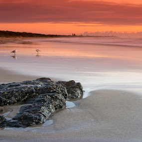 Friends by Tyhe Reading - Landscapes Beaches ( water, clouds, colour, sky, pentax, beach, sunrise, rocks )
