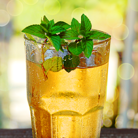 Mint Ice Tea Frosted Glass Bokeh by Robin Amaral - Food & Drink Alcohol & Drinks ( beverage, frosted glass, miint tea, ice tea, refreshment, mint, cold beverage, summertime, tea, liquid refreshment, bokeh, frosty )