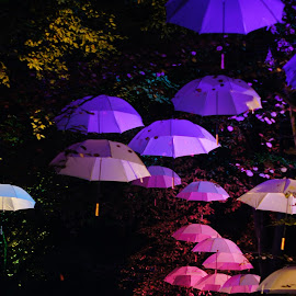 the umbrella show by Nico Kranenburg - Artistic Objects Clothing & Accessories ( umbrellas, night photography, rotterdam, 2014, electric run )
