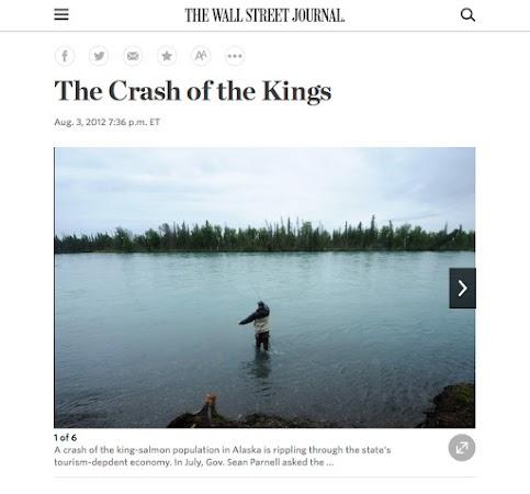 Kenai king salmon for the Wall Street Journal