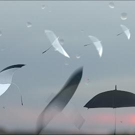 Improvisation on Autumn Theme by Zenonas Meškauskas - Digital Art Abstract ( umbrella, sunrise, birds, rain, droplets )