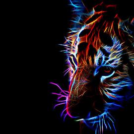 Tiger by Danette de Klerk - Digital Art Animals ( artistic, tiger, manipulation, digital art, wildlife )