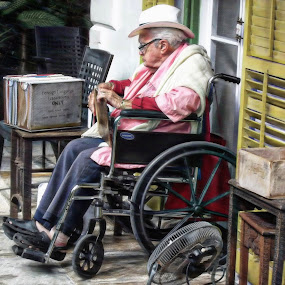 Waiting for the Tourists by Nancy Sadowski - Digital Art People ( wheelchair, hemingway, key west, elderly, man with hat, tours )