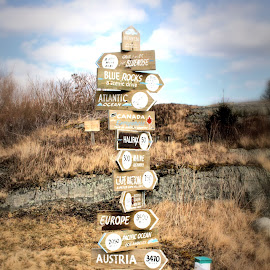 Where in the World do You Want to Go? by Lena Arkell - Artistic Objects Signs ( sign, nova scotia, direction, landscape, lunenburg )